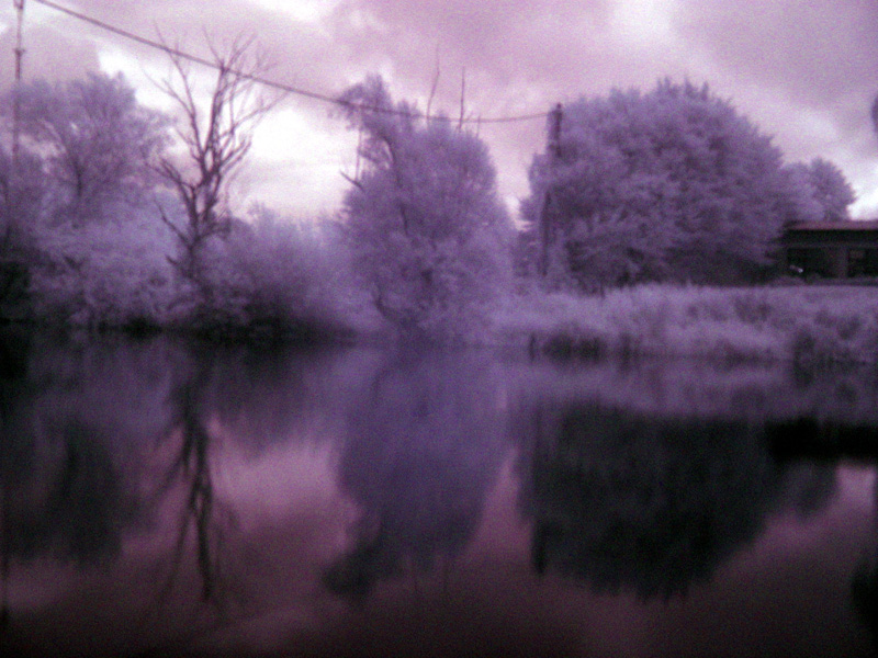 Summer Frost (Landscape in IR)