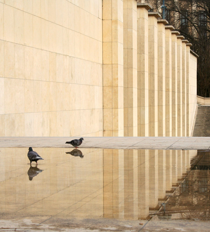Palais de Chaillot Reflection